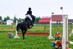 Reiter des jungen Mädchens auf einem Pferd überwindt Hindernisse Stockbilder