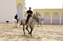 Reiter führt am 23. März 2012, Bahrain durch Stockfotos