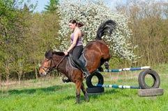 Reiter - Pferden-Springen Stockfoto