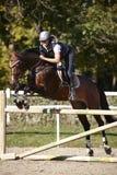Reiterin, die Pferd über den Sprüngen setzt Stockfotos