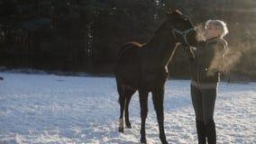 Reiterin lächelt, das Pferd bereitstehend stock video