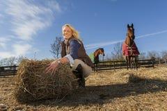 Reitermodell und Pferde Stockbild
