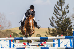 Reiterpferdemädchen-Springen Stockfoto