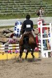 Reitershow - Pferdehalt an der Hürde Lizenzfreies Stockbild
