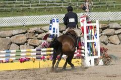 Reitershow - Pferdehalt an der Hürde Stockfoto