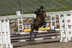 Reitershow-Springen Stockfotos
