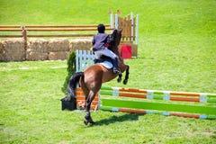 Reitershow-Springen und Reitenanzeige stockbild