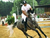 Reitersport Lizenzfreie Stockfotografie