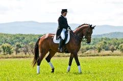 Reitersport. Weiblicher Dressagemitfahrer Lizenzfreie Stockfotos