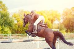 Reitersportbild Showspringen Wettbewerb Lizenzfreies Stockbild