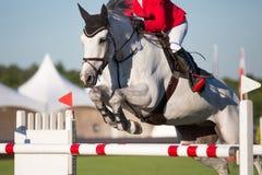 Reitersporte Lizenzfreies Stockbild