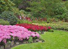 Reizend Blumenbett Stockfoto