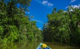 Reizend door boot in de diepte van de Wildernissen van Amazonië in het Nationale Park van Cuyabeno, Ecuador royalty-vrije stock foto