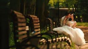 Reizend glückliche Jungvermählten küssen auf der Bank im sonnigen Park stock video footage
