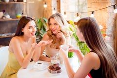 Reizend hübsches Mädchen, das etwas interessant zu ihrem Freund sagt Lizenzfreie Stockbilder