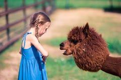 Reizend kleines Mädchen spielt mit nettem Alpaka im Park lizenzfreies stockfoto