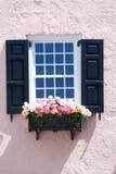 Reizend rosa Gebäude mit Fenster und schwarze Fensterläden und Pflanzerkasten in Charleston, Süd-Carolna Stockbild