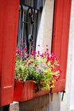 Reizend Rot schloss Fenster mit dem Kasten des Pflanzers in Charleston, Sc Fensterläden Stockfotografie