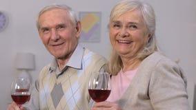 Reizende ältere Paare mit den Weingläsern, die Kamera und lächelnde Feier betrachten stock video footage