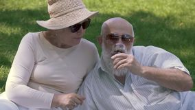 Reizende ältere Paare am Picknick im Park stock footage
