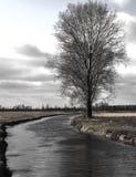 Reizende Ansicht des Flusses, der Bäume, des Waldes und der Felder auf dem backgr Stockbild