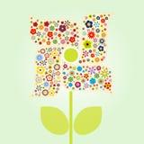 Reizende Blume Stockbild