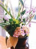 Reizende Blumen Lizenzfreie Stockfotografie