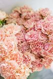 Reizende Blumen im Glasvase Schöner Blumenstrauß der Gartennelke ist eine ungewöhnliche Farbe Blumenzusammensetzung, Tageslicht S stockfotografie