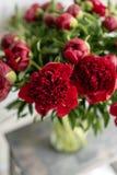 Reizende Blumen im Glasvase Schöner Blumenstrauß von roten Pfingstrosen Blumenzusammensetzung, Szene, Tageslicht tapete stockfotografie