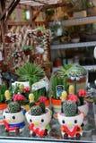 Reizende Blumentöpfe Lizenzfreie Stockfotos