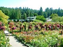 Reizende Butchart-Gärten in Victoria, BC Stockbilder