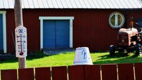 Reizende Details der schwedischen Landschaft Lizenzfreie Stockfotografie