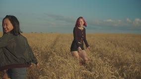 Reizende Frauen, die auf dem Weizengebiet bei Sonnenuntergang sich freuen stock footage