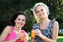 Reizende Frauen, die draußen Wein trinken Stockfoto