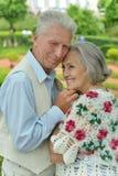 Reizende glückliche reife Paare Stockbild