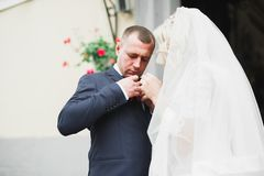 Reizende gl?ckliche Hochzeitspaare, Braut mit langem wei?em Kleid lizenzfreies stockfoto