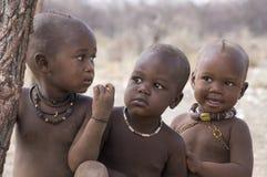 3 reizende Himba-Kinder Stockbild