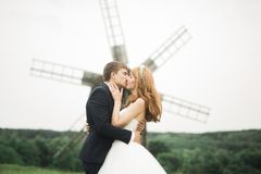 Reizende Hochzeitspaare, -braut und -bräutigam, die auf dem Gebiet während des Sonnenuntergangs aufwirft lizenzfreie stockbilder