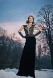 Reizende junge Dame, die drastisch mit langer schwarzer Kleider- und Silbertiara in der Winterlandschaft aufwirft Brunettefrau mi Lizenzfreie Stockbilder