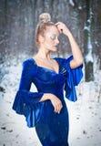 Reizende junge Dame im eleganten blauen Kleid, das in der Winterlandschaft, königlicher Blick aufwirft Moderne Blondine mit Wald  Stockbild