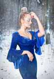 Reizende junge Dame im eleganten blauen Kleid, das in der Winterlandschaft, königlicher Blick aufwirft Moderne Blondine mit Wald  Stockfotografie