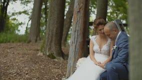 Reizende junge Paare glückliches togather in einem Wald-` s Haus stock footage