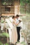Reizende Paare in der Liebe, die auf der Tageshochzeit, draußen stehend im Park nahe See sich küsst stockfotos