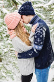 Reizende Paare, die im schneebedeckten Wald unter Tannenbäumen küssen Stockfotografie