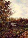 Reizender Herbst mit einer Bank lizenzfreies stockfoto
