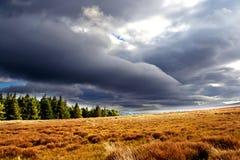 Reizender Himmel und schöne Natur stockfotos