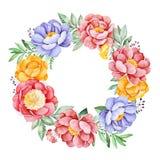 Reizender Kranz mit Pfingstrose, Rose, Blättern, Blumen, Niederlassungen und Beeren stock abbildung