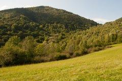Reizender sonniger Nachmittag in der ruhigen Natur Lizenzfreies Stockfoto