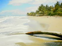 Reizender Tag auf dem Strand lizenzfreie stockbilder