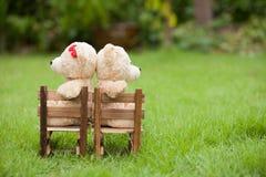 Reizender Teddybär des Brauns zwei sitzen auf Holzstuhl, morgens, Stockfotografie